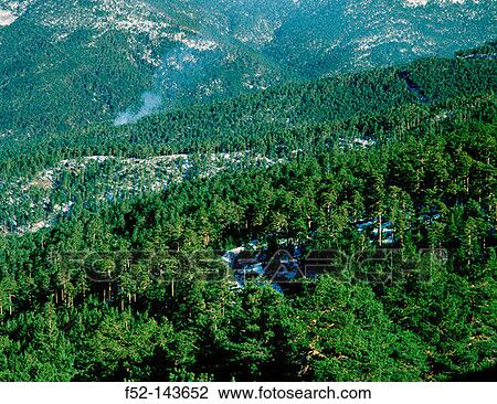 Stock photography search 21 8 million stock photos - Madrid forest ...