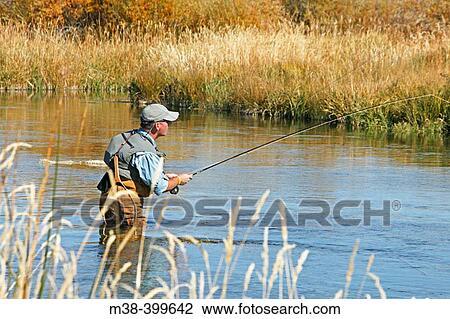 Stock photo of man fly fishing silver creek idaho usa for Silver creek idaho fishing