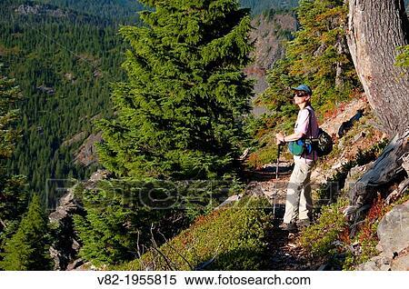 mt Hood Clipart Woods Wilderness mt Hood