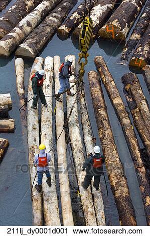 Stock Photography Of Longshoremen Loading A Log Ship In