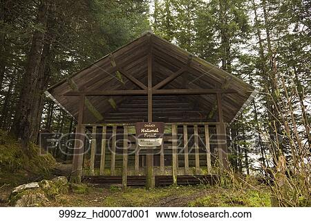 Stock photography of national forest service cabin along for National forest service cabins