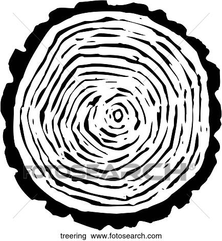 Tree Ring Drawings Tree Rings