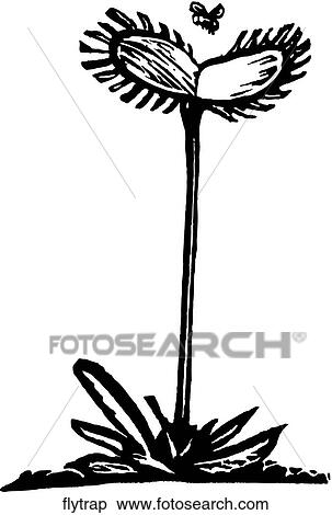Clipart of Fly Trap flytrap - Search Clip Art ...