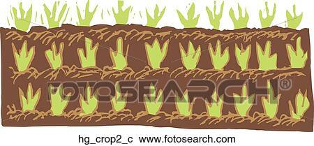 农作物种子粘贴画作品图片