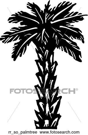 Clipart palmier rr so palmtree recherchez des clip arts des illustrations des dessins et - Palmier clipart ...