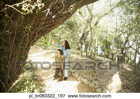 Bild spanisch mutter sohn auf natur spur pl br060322 - Baum auf spanisch ...