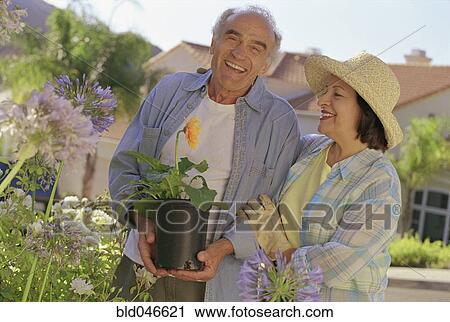 banques de photographies personne agee hispanic accouplent jardinage bld046621 recherchez. Black Bedroom Furniture Sets. Home Design Ideas