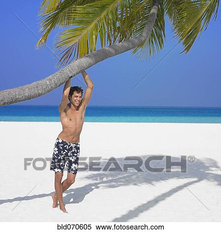 Stock image of man hanging on palm tree at beach bld070605 man hanging on palm tree at beach voltagebd