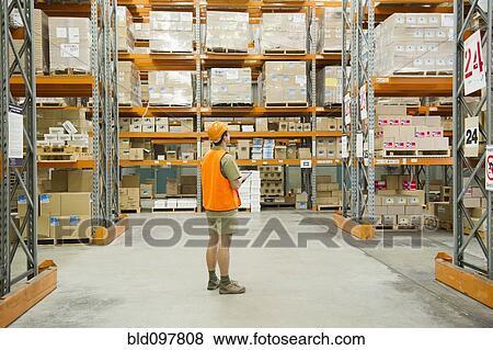 images ouvrier regarder inventaire dans entrep t bld097808 recherchez des photos des. Black Bedroom Furniture Sets. Home Design Ideas