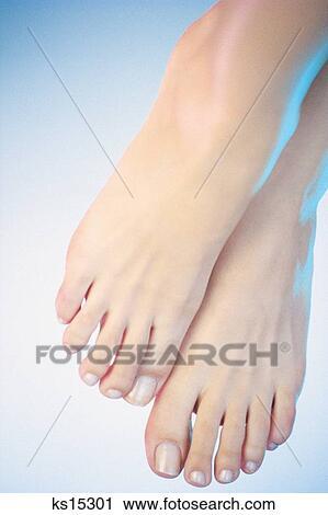 脚部位名称图解
