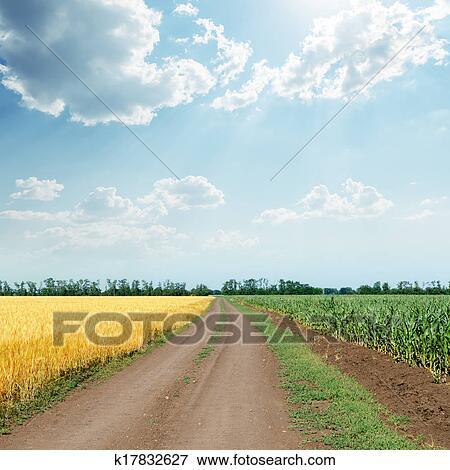 Immagine soleggiato cielo con nubi sopra strada in - Soleggiato in inglese ...