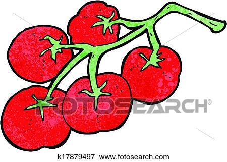 Clip Art of tomatoes on vine illustration k17879497 ...