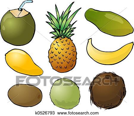 绘图 热带的水果, 插图
