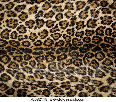 bilder leopardenmuster 2 k0582178 suche stockfotos bilder print fotos und foto clipart. Black Bedroom Furniture Sets. Home Design Ideas