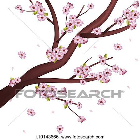 Clip art sakura albero k19143666 cerca clipart for Sakura albero
