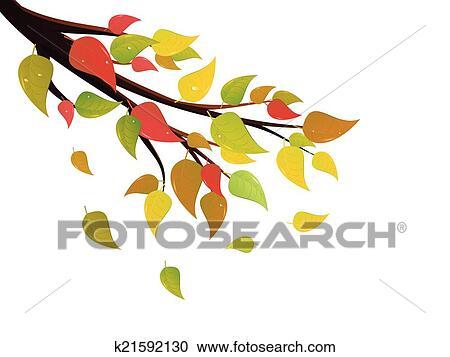 剪贴画 - 下降树叶, 在上, 分支图片
