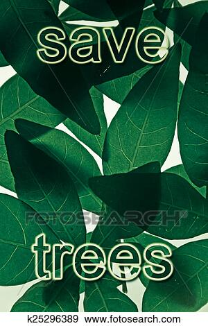 save trees save nature About 20,000,000 trees are cut down annually for virgin paper used for  take  action now for the environment – save forests, save paper, save money   created by using earth's natural resources instead think about giving.