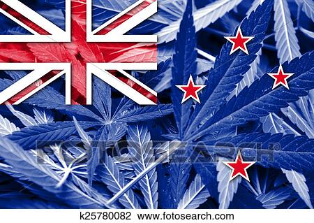 new zealands government drug policy Govtnz is your guide to finding and using new zealand government services.