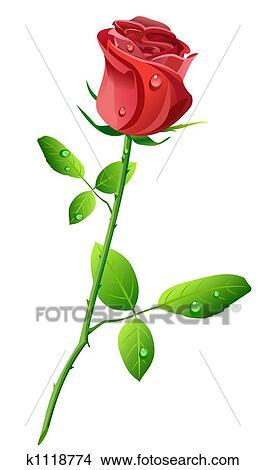Dessins rose rouge k1118774 recherche de clip arts d 39 illustrations et d 39 images vectoris es - Dessin de rose rouge ...