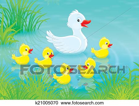 Banque d 39 illustrations canard et canetons k21005070 - Illustration canard ...