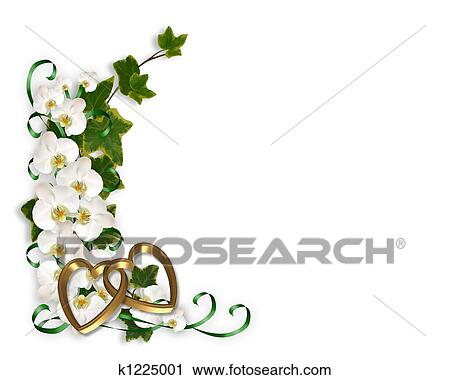 Orchid Stock Illustrations. 3,250 orchid clip art images and ...