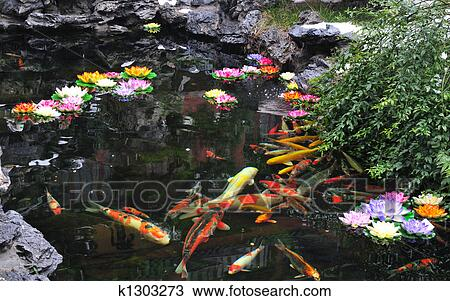 Stock photo of chinese koi pond k1303273 search stock for Chinese koi pond