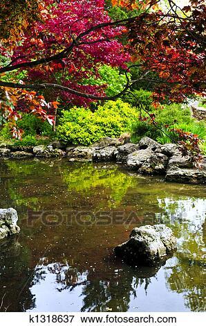 Immagine stagno in giardino zen k1318637 cerca for Stagno in giardino