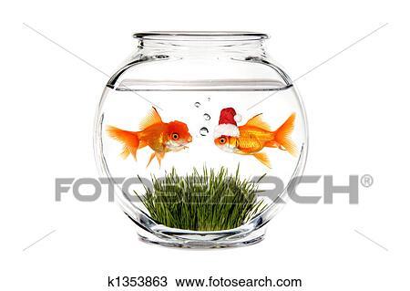 dessin poisson rouge dire santa quel il wants pour. Black Bedroom Furniture Sets. Home Design Ideas