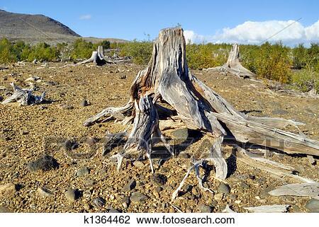 Stock photo of soil erosion k1364462 search stock for Soil erosion in hindi