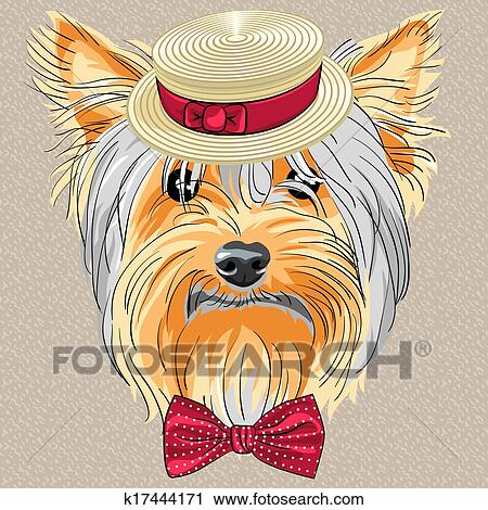 Yorkshire terrier Clipart Illustrations. 187 yorkshire terrier ...