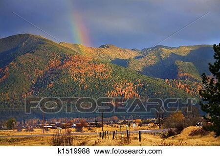 Pictures Of Montana Gold Rainbow Over Tamarack Trees Fall