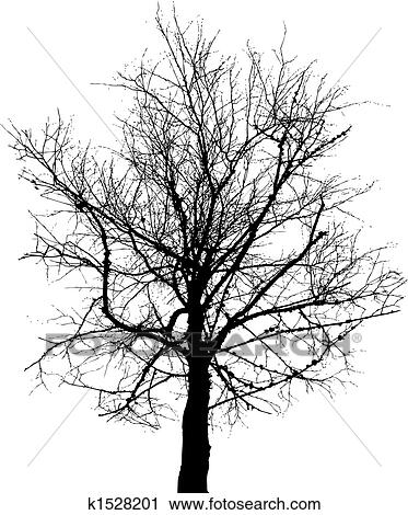 Clipart arbre nu vecteur fond k1528201 recherchez - Dessin arbre nu ...