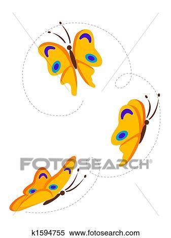 飞翔的蝴蝶 - 天鹅飞翔图片