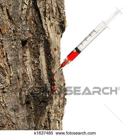 banque d 39 image seringue ins r dans tronc arbre blanc k1637485 recherchez des photos. Black Bedroom Furniture Sets. Home Design Ideas