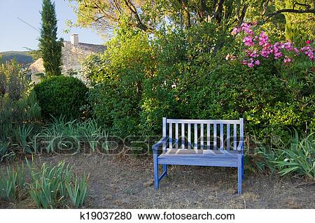 Blue Painted Wooden Garden Bench In A Leafy Rural Garden In Provence,  France Under Pretty Flowering Purple Bouganvillea For An Oasis Of  Tranquillity.