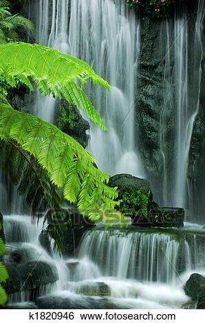 Archivio di immagini giardino cascate k1820946 cerca for Cascate in giardino