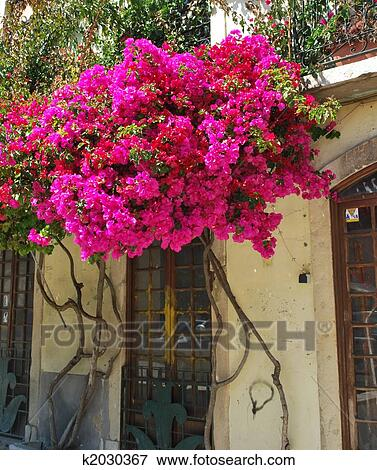 Image typique b timent collant fleurs dans for Collant mural francais