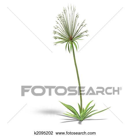 Clipart - papyrus. Fotosearch - Recherchez des Cliparts, des ...: fotosearch.fr/csp209/k2095202