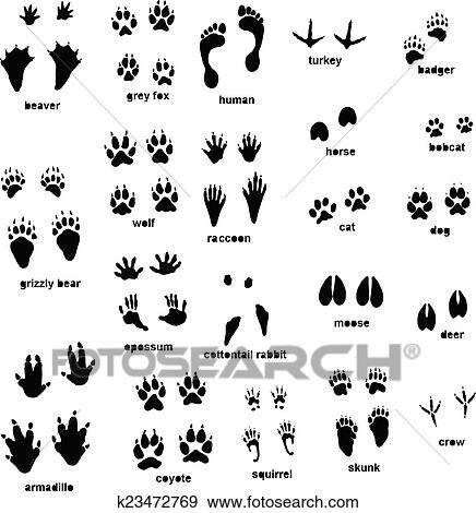 clip art of animal tracks k23472769 search clipart illustration rh fotosearch com animal tracks clipart free animal tracks clipart free