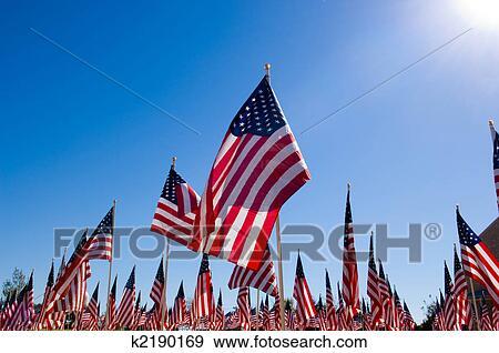 Archivio fotografico bandiera americana mostra in - Papaveri e veterani giorno di papaveri e veterani ...