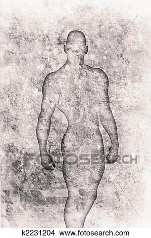 图吧 - 身体 k2231204 - 搜索图象、壁饰照片、