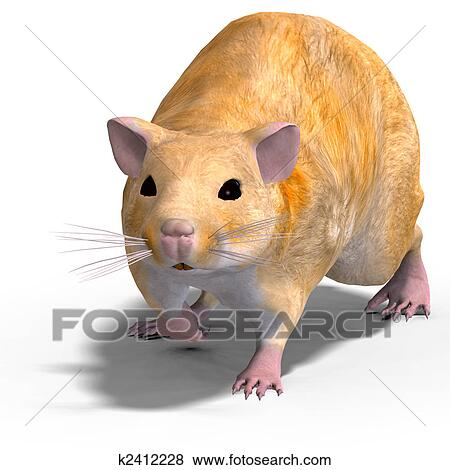 Stock Illustration of cute hamster k2412228 - Search EPS Clip Art ...