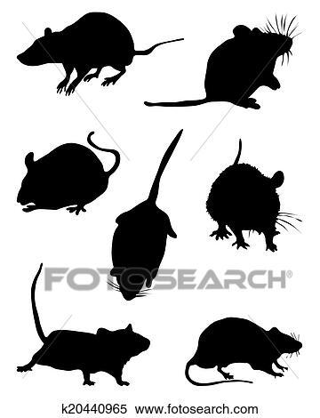 剪贴画 - 老鼠图片