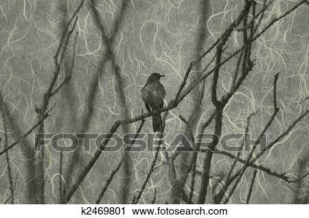clipart of mocking bird in the ocotillo v1 k2469801