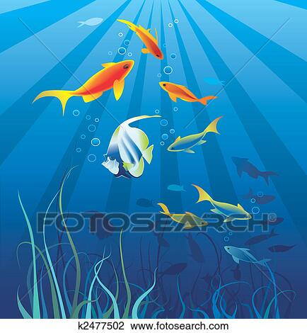 Clip Art of Underwater life, sea. Fish, seaweeds k2477502 ...