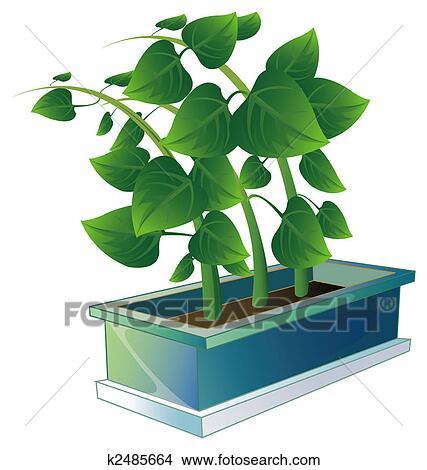 手绘图 - 植物