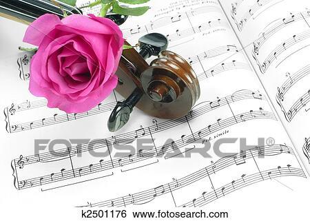 Archivio di immagini violino e rosa k2501176 cerca - Immagini violino a colori ...