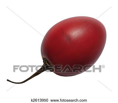 Ovocie, tamarillo, ani, tsifomandry, cvikla, ani, paradajka, strom