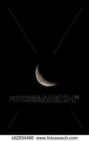 图片银行 - 苍白, 月牙形的月亮, 垂直, 带, 正文, 或者, 拷贝空间.图片