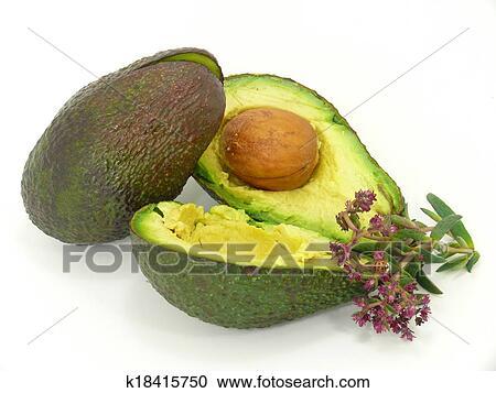 stock fotografie avocado frucht k18415750 suche stockfotografien fotos wandbilder bilder. Black Bedroom Furniture Sets. Home Design Ideas